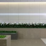 احواض زرع كوريان من شركة توب لاين (4)